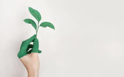 Beratung für nachhaltige Wertschöpfung – Wozu?