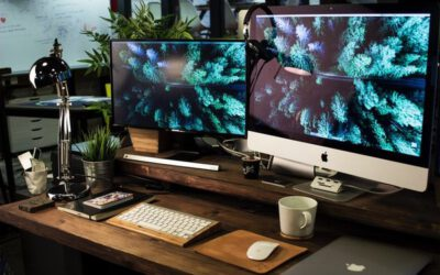 Die Konvergenz von Digitalisierung und Nachhaltigkeit